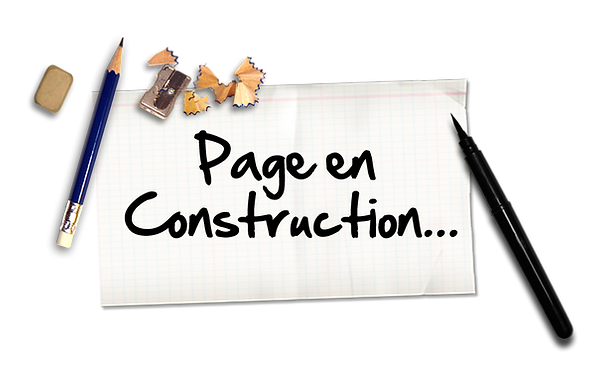 PAGE CONSTUCTION.png