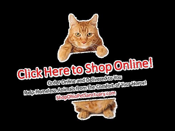 shop%20online%20v2_edited.png