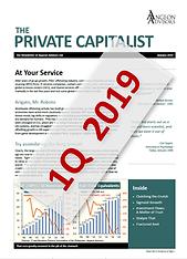 Angeon Advisors: The Private Capitalist, January 2019