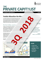 Angeon Advisors: The Private Capitalist, July 2018