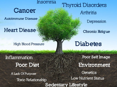 What Is Functional Medicine: Our Approach