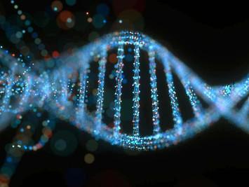 Your Genes Aren't Your Destiny!