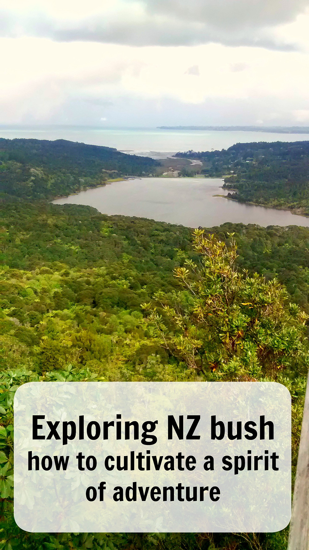 Exploring NZ bush how to cultivate a spirit of adventure