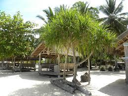 Pangandaran beach hut warung