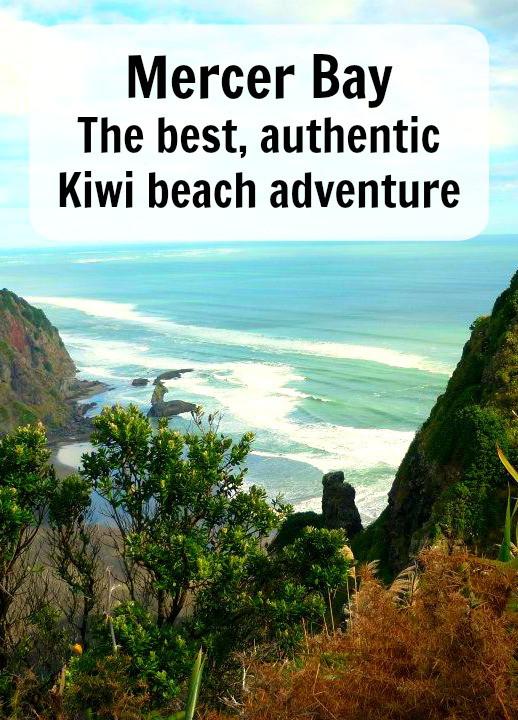 Mercer Bay the best authentic kiwi beach adventure