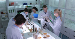 Team of Food Researchers Examination of