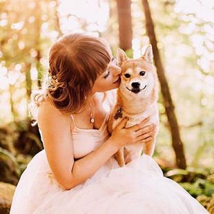 Pure Elegance Bride