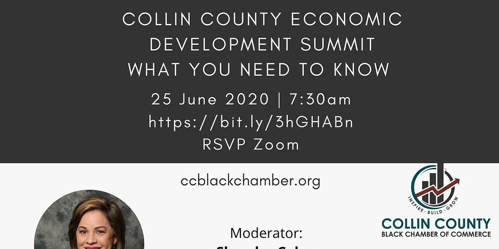 Collin County Black Chamber of Commerce Economic Development Summit