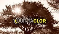 QUINTACLOR.jpg