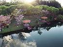 Brasilien_rio_brilhante_lake_980.jpg