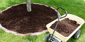Mulching Services Asheville NC