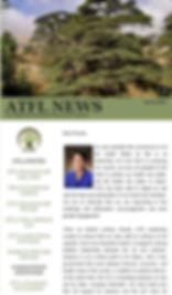 Spring 2020 Newsletter image.png