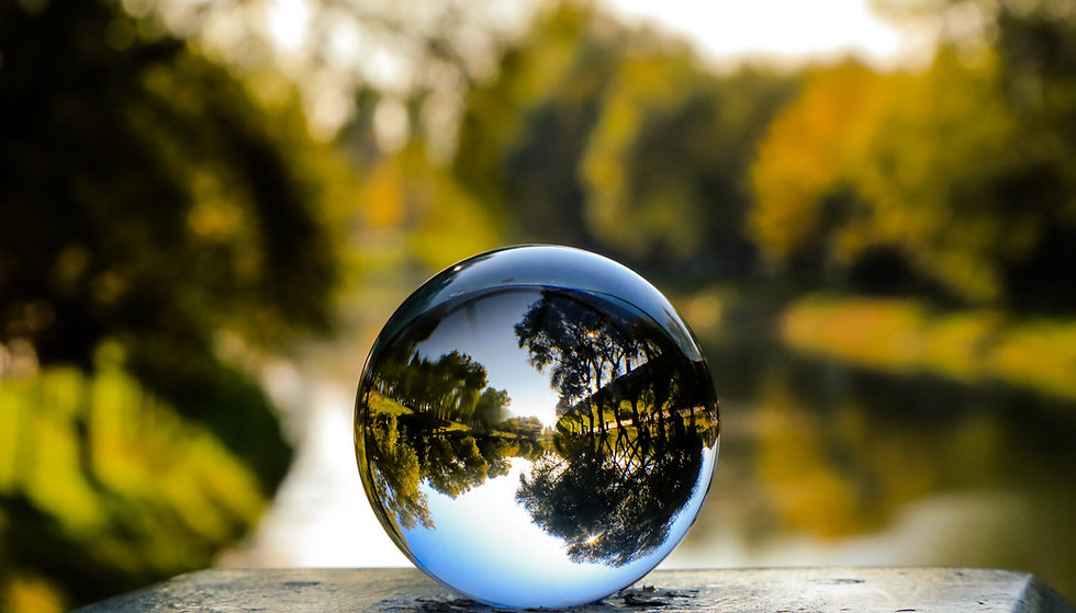 Glass%20ball%20with%20nature_edited.jpg