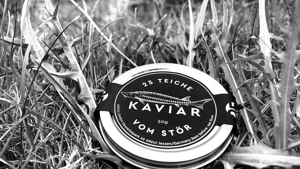 25 Teiche Kaviar 50g