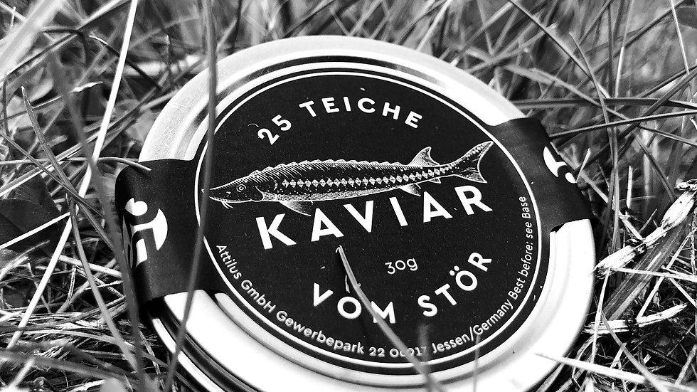 25 Teiche Kaviar 30g