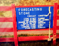 Noticeboard weather Funny stone