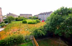 Bailie Grove garden area
