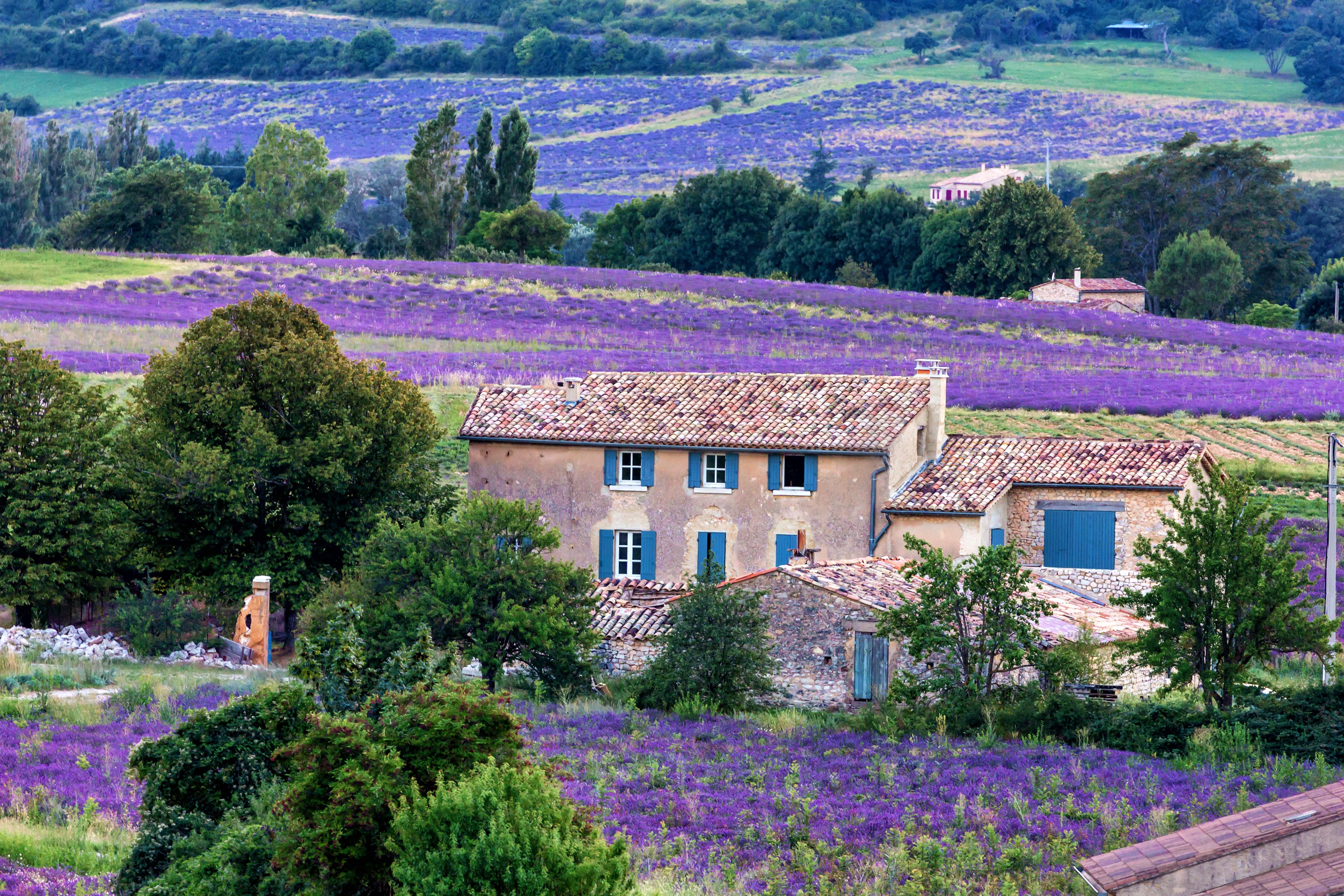FranceSaultshutterstock_662561254