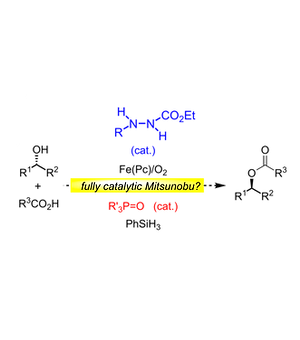 Org. Lett. 2016, 18, 4036–4039.png