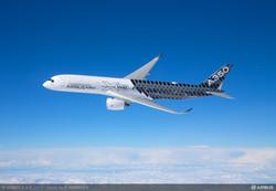 Carbon Fibre Aeroplane