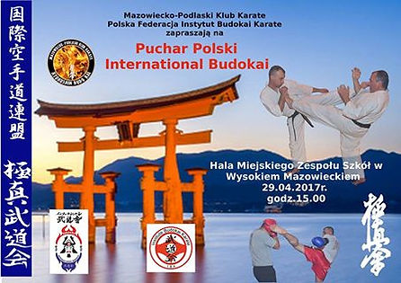 Puchar Polski Karate