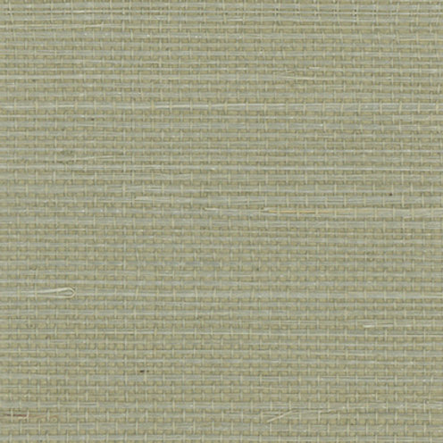GL450-23   HINT OF GRASS