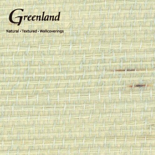 G0078NS3009 WHITE GREEN
