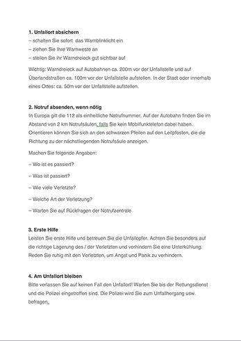 Schadenschnelldienst Unfall- Checkliste