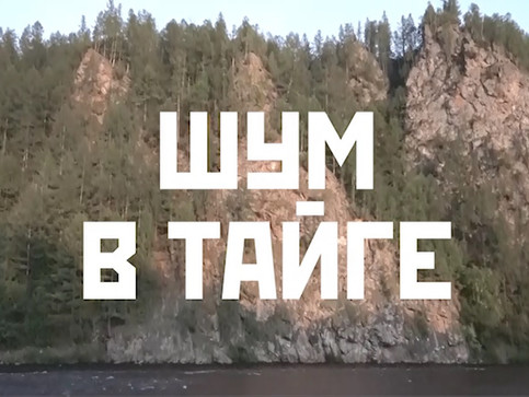 """Шум в Тайге"" / ""Noise in Taiga"""