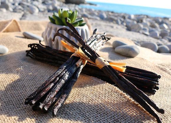 10 gousses de Vanille noire gourmet 14 à 16 cm - Sélection Matoy