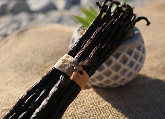 20 gousses de Vanille noire gourmet 14 à 16 cm - Sélection Matoy