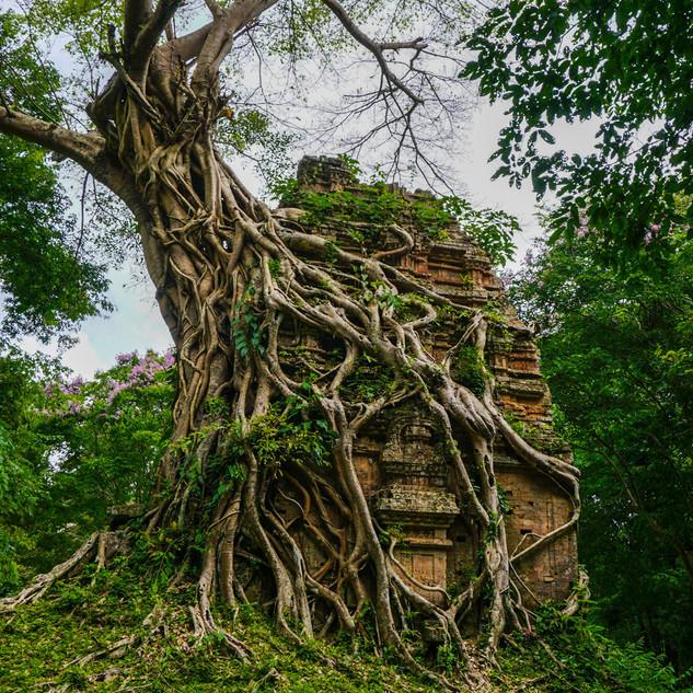 Храмы Самбор Прей Кук, Камбоджа