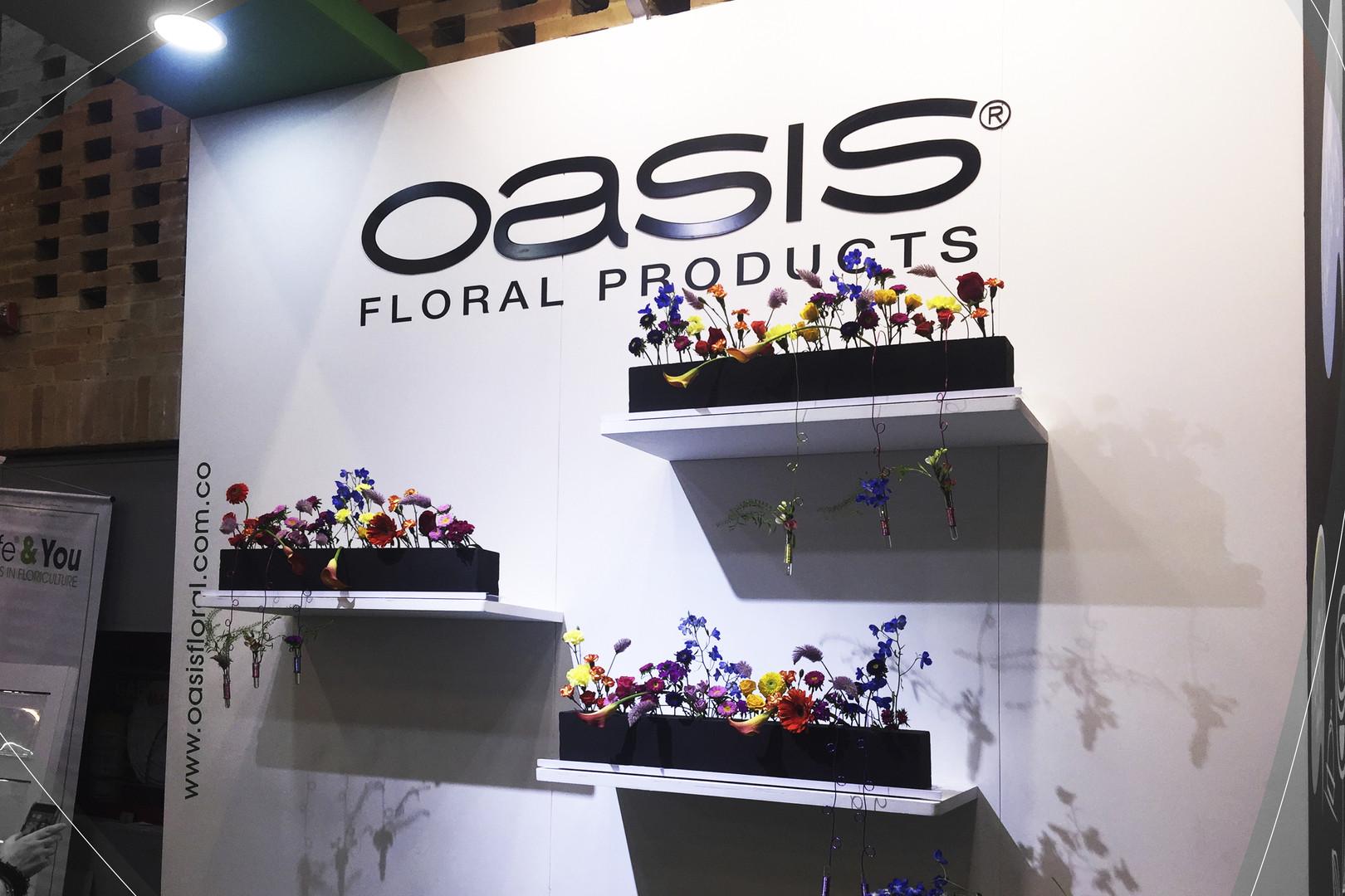 Oasis IMG_2506.jpg