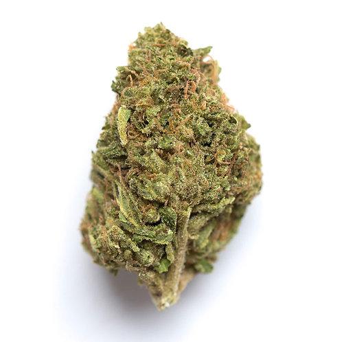 RAWTTON (23.47% Total Cannabinoids)