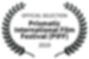 OFFICIAL SELECTION - Prismatic Internati