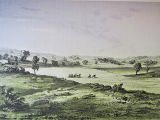 #3:  June 6-1, 1853.  Saint Paul to the Sauk River.