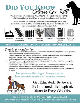 Dog Collar Flyer.jpg
