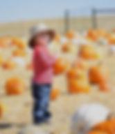 Pumpkin Patch Kids Activity