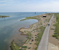rye-harbour-nature-reserve.jpg