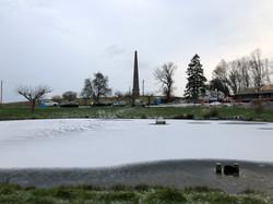 Friendship Pond Freezes over