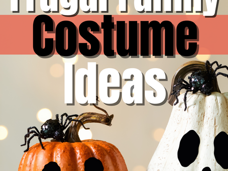 12 Clever Ways To Find Frugal Family Costumes