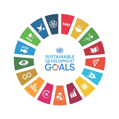 SustainableDevelopmemtGoals.png