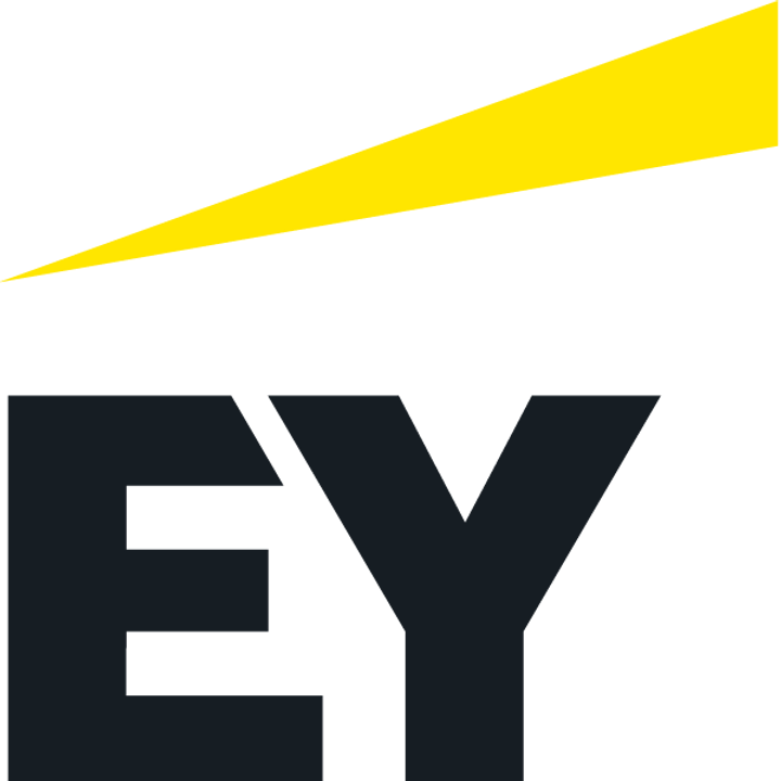 EY: Preparing for Investment