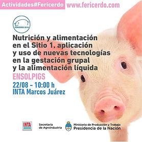 Actividades #FERICERDO2019 🐖🐷 22 y 23