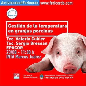 #fericerdo