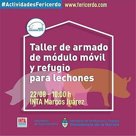#Actividades #FERICERDO2019 🐖🐷 22 y 23