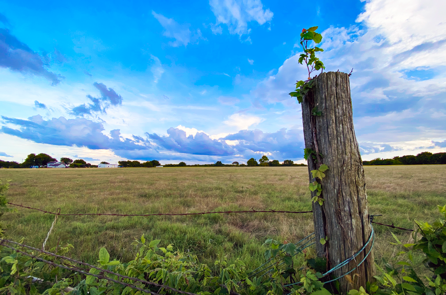 Celina-Texas-Fence-Post.png