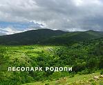 Лесопарк Родопи.jpg