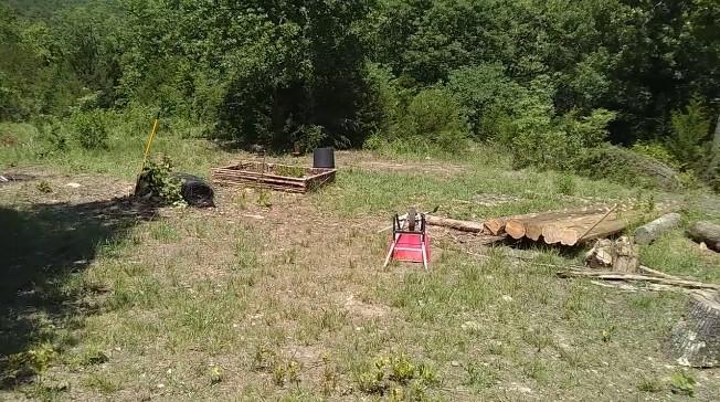 Raised garden and felled logs on son's homestead
