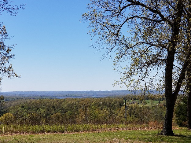 Beautiful trees and view in the Ozark Mountains.